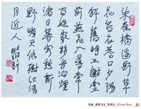彭朝生-硬笔书法(特邀)