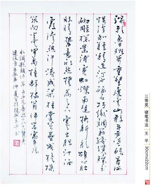 王平(三等奖)