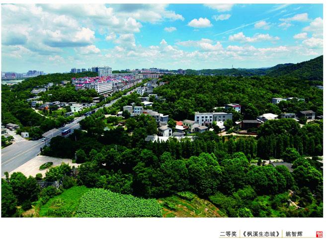姚智辉-《枫溪生态城》(二等奖)