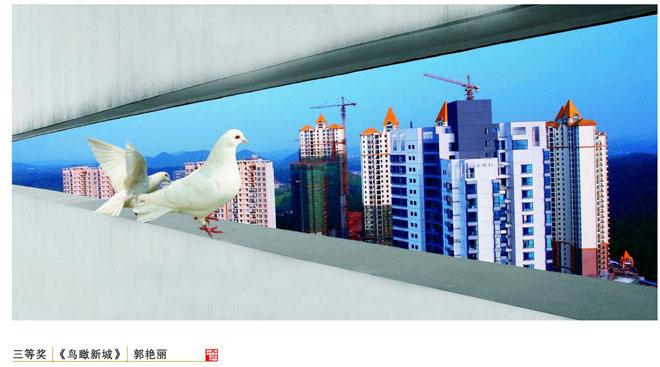 郭艳丽-《鸟瞰新城》(三等奖)
